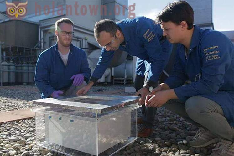 Scientists have successfully extracted water from the air in the desert
