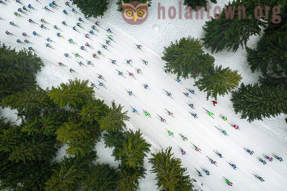 The winners of the contest aerial photography Drone Awards 2019