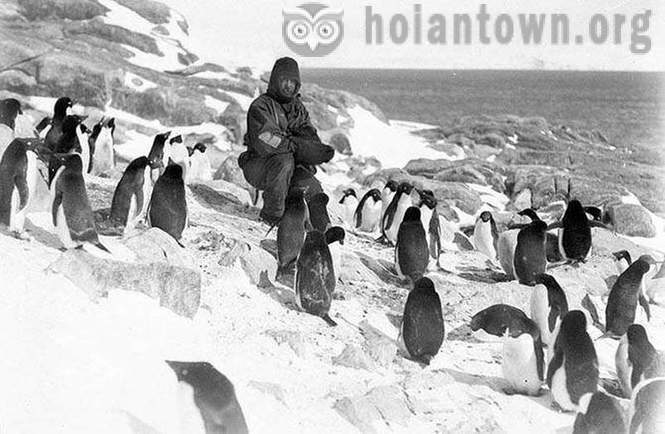 The most impressive photos of Antarctica early 20th century